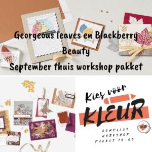 Nieuw! Georgeous Leaves/ Blackberry beauty Kies voor kleur workshop pakket sept. 2021