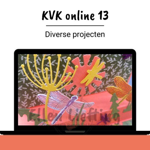 Kies voor kleur 13 online inspiratie om diverse projecten te maken van Ellen Liefting